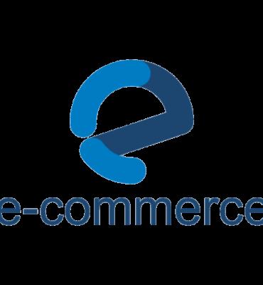 Logo article sur le e-commerce