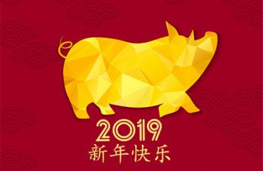 2019 année du cochon